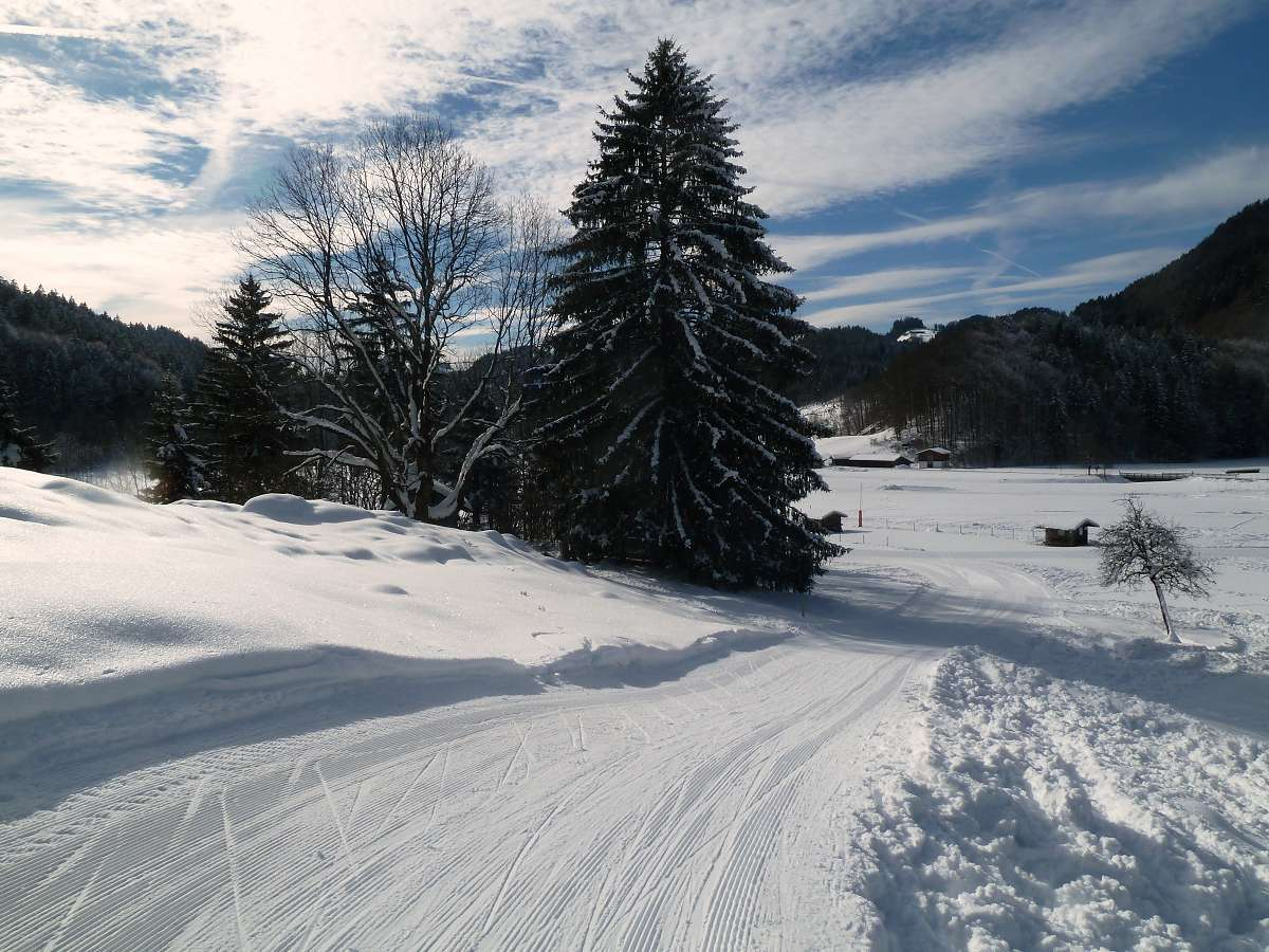 Langlauf in Aschau Sachrang (5)